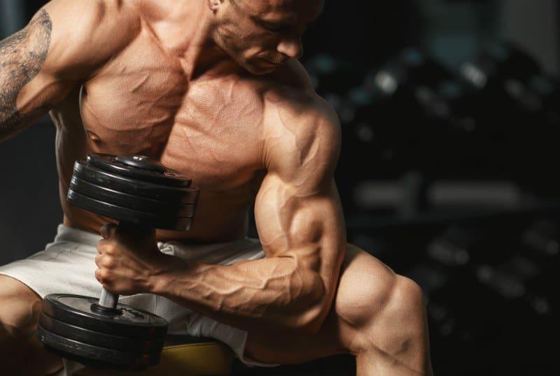 גבר חטוב מבצע תרגיל לאימון שריר הזרוע הדו ראשי באמצעות משקולות יד