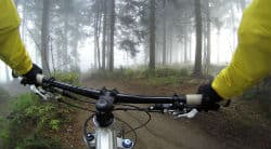 מבט מגוף ראשון על מסלול רכיבה ביער
